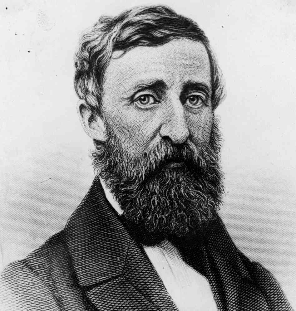a look into civil disobedience connections modern criticizing henry thoreau young men purpose